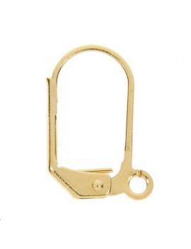 Paire de dormeuses simples 16mm avec anneau doré