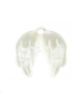 Nacre blanche paire d'ailes