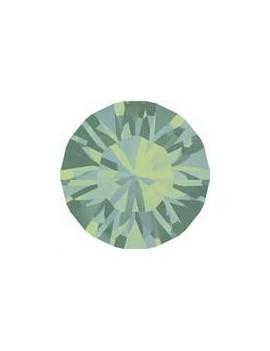 Lot de 20 pièces xilion chaton 3.2 mm (PP24) Pacific opal foiled