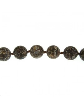 Agate turitella 19-20mm mate lot de 1 pièce